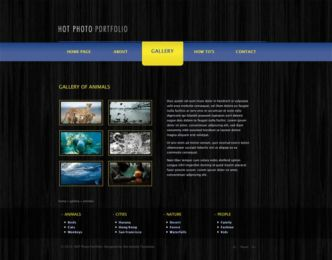 Hot Photo Portfolio - Joomla Portfolio Template Image 2