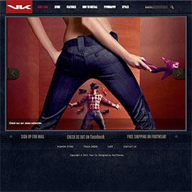WordPress Fashion Theme