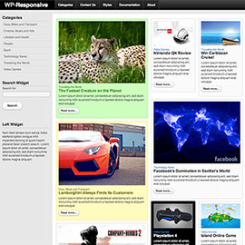 Hot Responsive WordPress