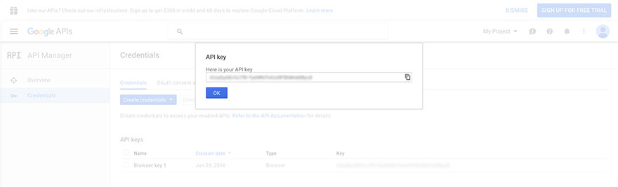 Obtain Google Maps API from Google.com - Step 4