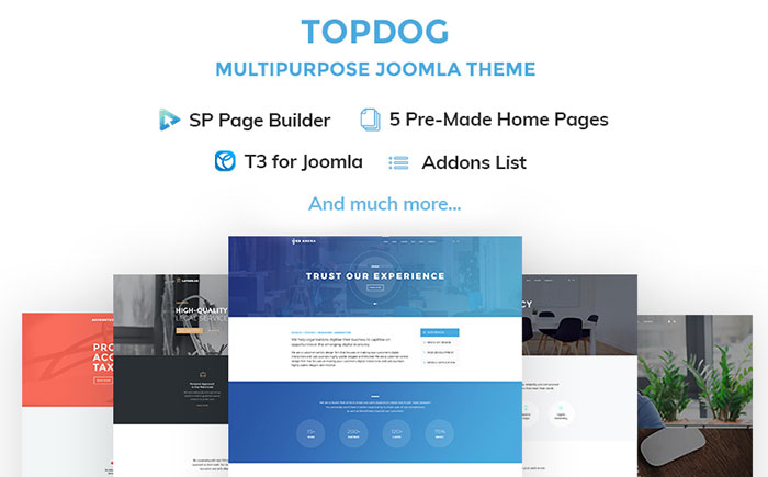 Easy-in-Use Multifunctional Joomla Template
