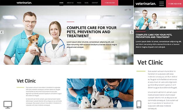 Veterinary template