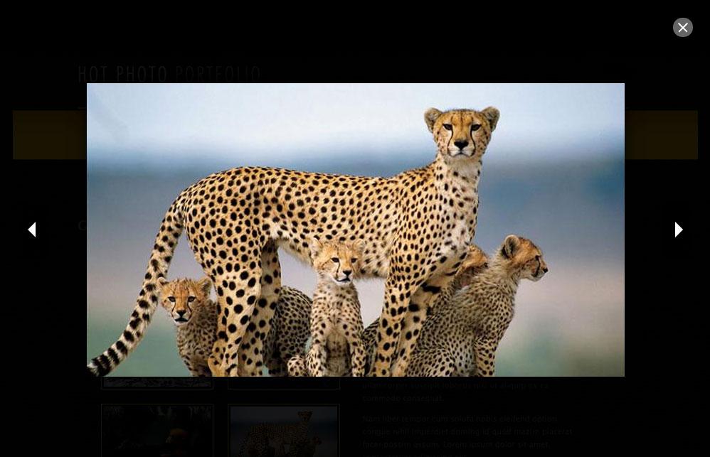 Hot Photo Gallery Plugin for Joomla - HotThemes