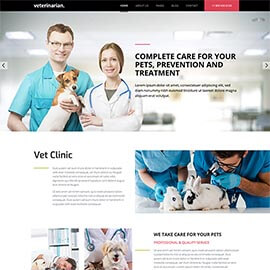 Veterinary Template