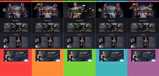Accent colors of the Gym Joomla! template