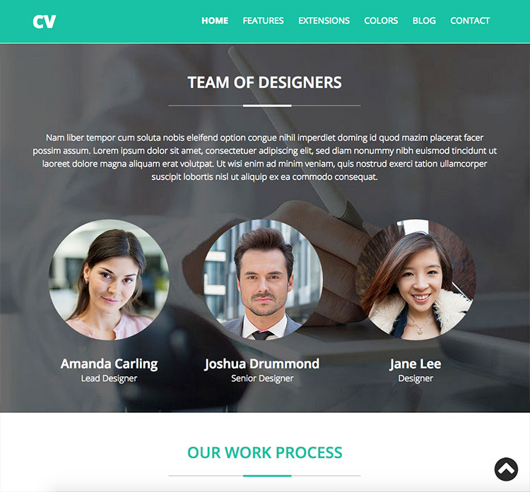 template screen shot 4 - Resume Cv Joomla Template