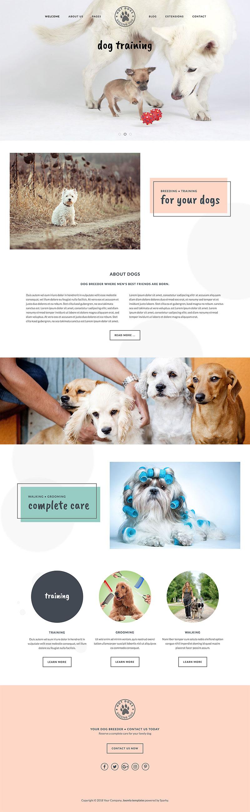 dog template - Vatoz.atozdevelopment.co