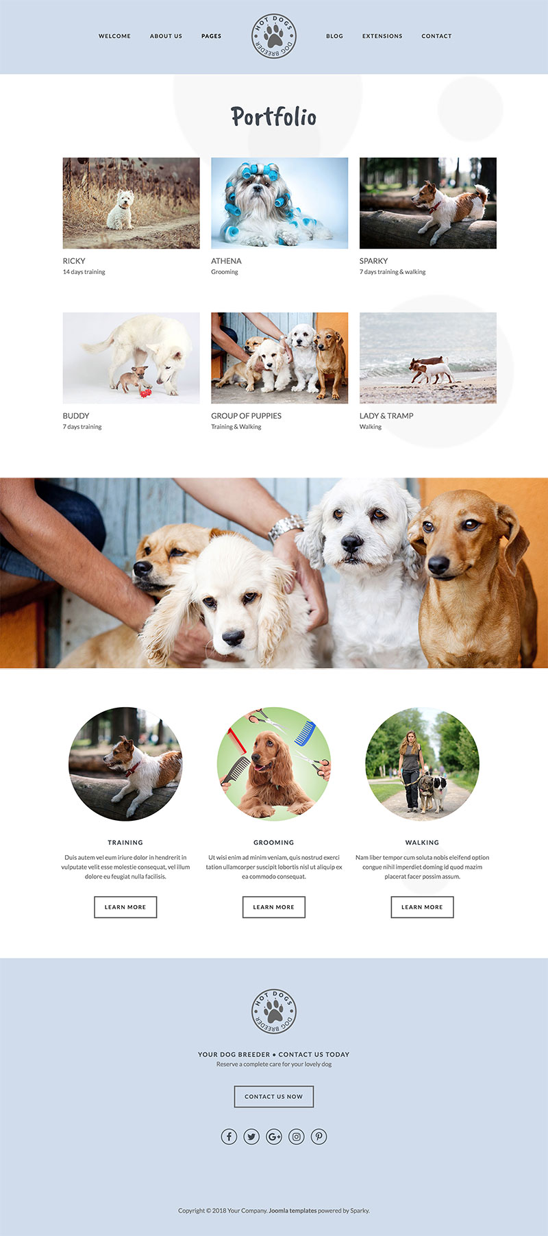 pet templates
