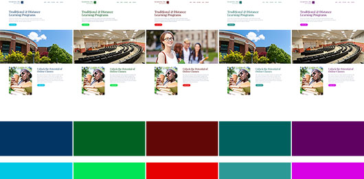 Color schemes of the Learning Joomla template