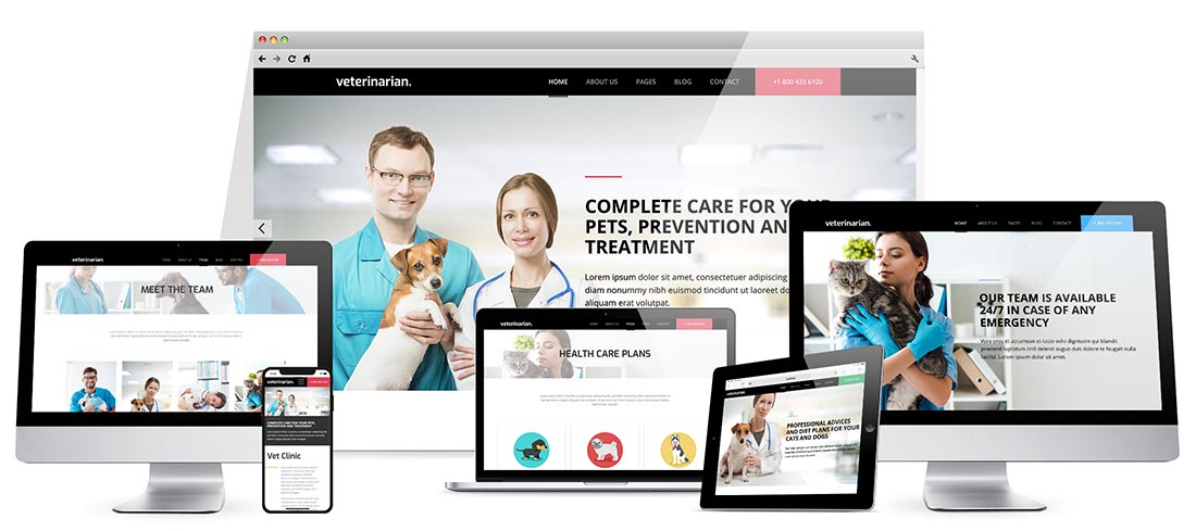 Responsive Veterinary Template