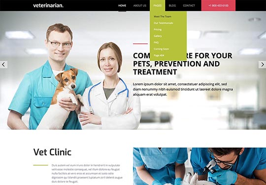 Drop-down multilevel menu in Veterinary template